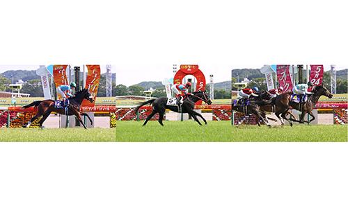 緊急生放送 三冠馬対決に列島が沸いた!第40回ジャパンカップ